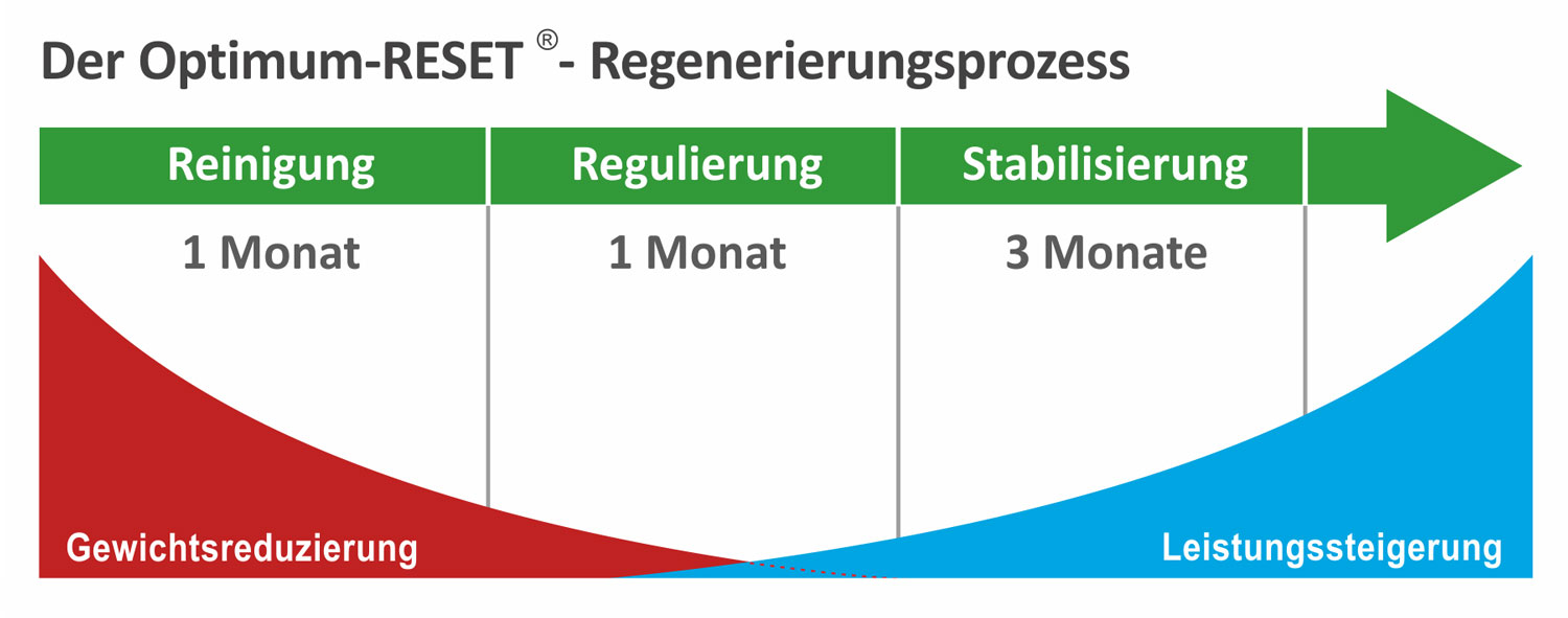 Prozess Optimum Reset